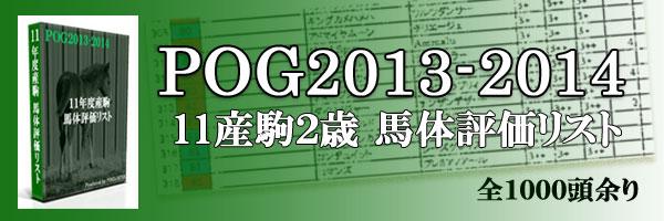 POG2013-2014デビュー前2歳11産駒馬体評価リスト
